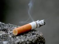 Trabucuri versus țigari
