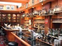 Club Barfly's – Viena
