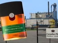 Cel mai bun whisky canadian al anului 2014
