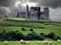 IRISH WHISKEY- o scurtă poveste